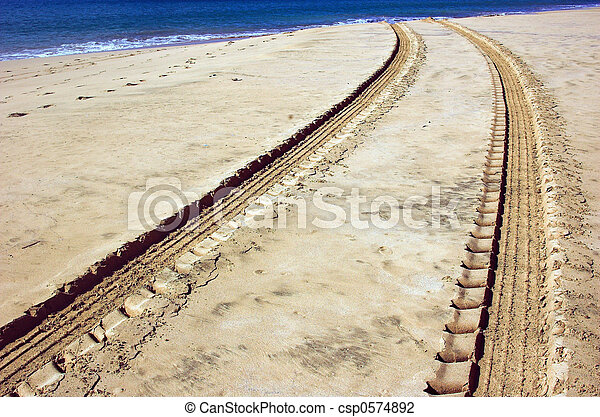 Vehicle tracks in the sand on the beach - csp0574892