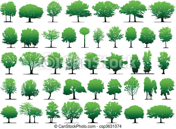 vektor, bäume - csp3631074