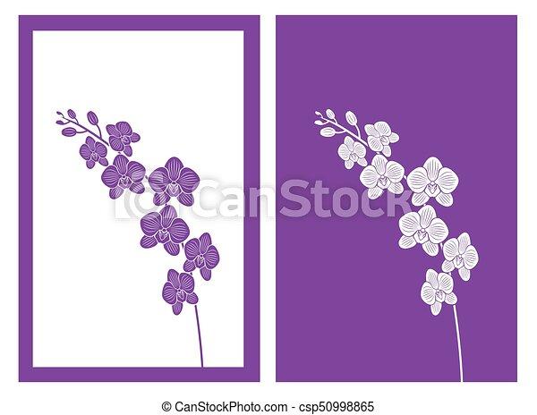 Orchideenblütenvektor - csp50998865