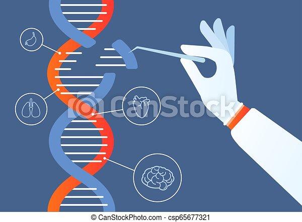 Dna Engineering. Genome Crispr cas9, Gen Mutation Code Modifikation. Menschliche Biochemie und Chromosomforschungs-Vektorkonzept - csp65677321