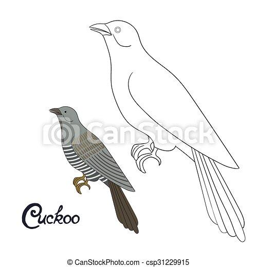 Vektor, erzieherisch, färbung, kuckuck, spiel, buch, vogel ...