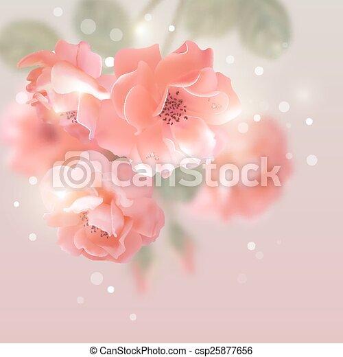 vektor, rosen, blumen, blank - csp25877656