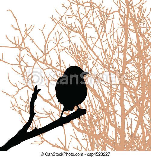 vektor, silhouette, vogel, zweig - csp4523227