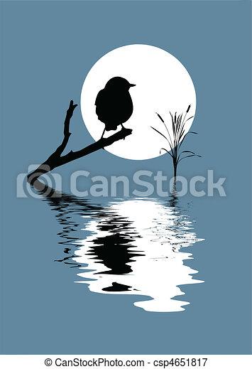 vektor, silhouette, vogel, zweig - csp4651817