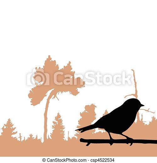 vektor, silhuet, fugl, branch - csp4522534
