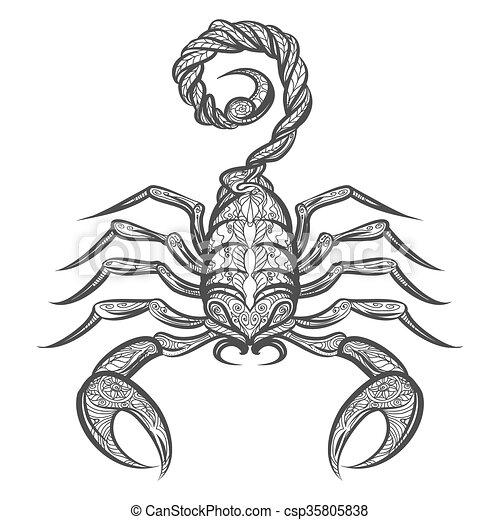 Vektor Zentangle Skorpion Ikone Ornament Skorpion Hand