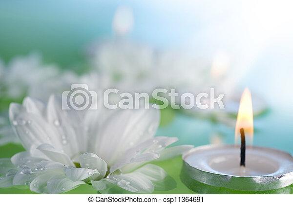 velas, flutuante, flores - csp11364691