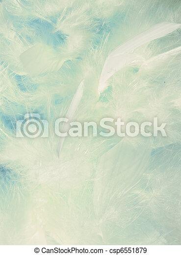 velloso, plumas, plano de fondo, anuble que quiere - csp6551879