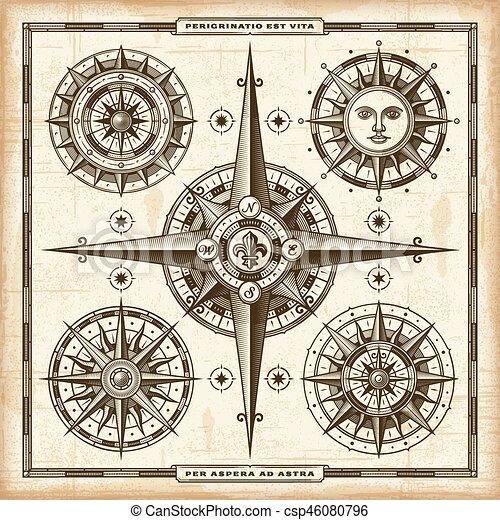 vendange, compas, ensemble, roses - csp46080796