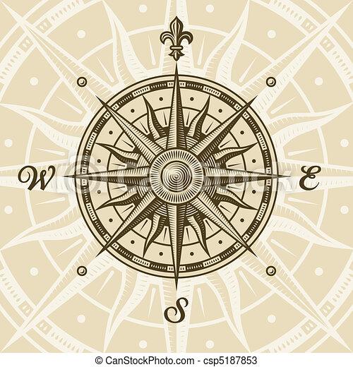 vendange, rose compas - csp5187853