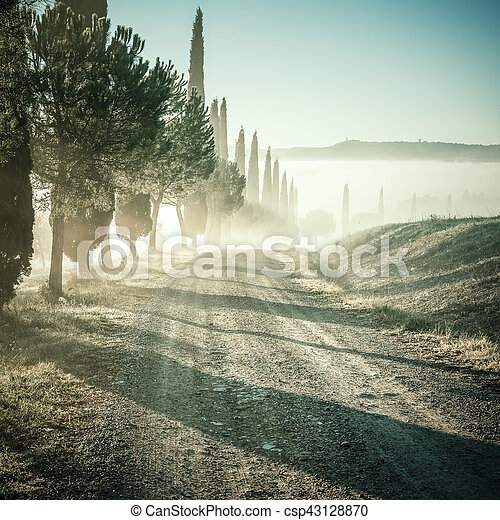 Un paisaje antiguo con ciprés y carretera - csp43128870