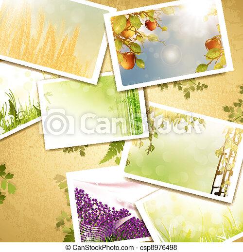 Fotos antiguas de la naturaleza - csp8976498