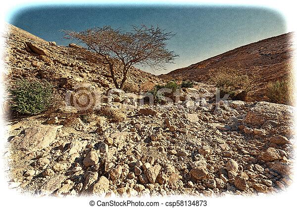 Una imagen antigua del desierto de Negav en Israel. - csp58134873