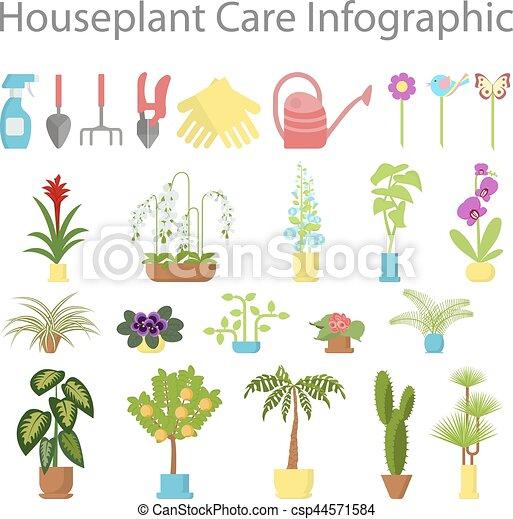 Ventana elementos jardiner a ifographic plantas plano for Elementos de jardineria