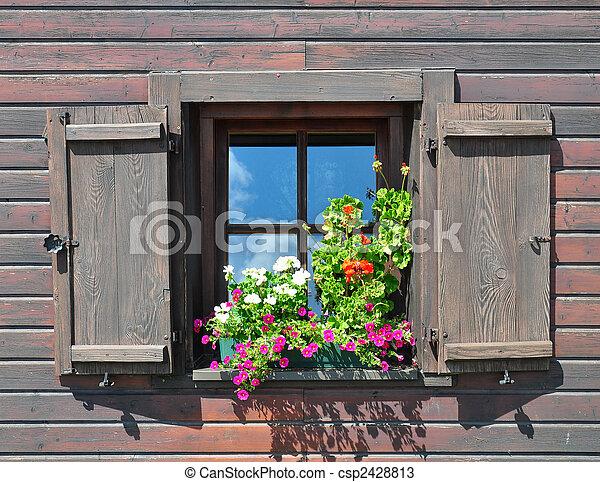 Flores en la ventana - csp2428813