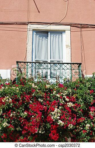 Ventana Flores Balcón Típico Lisboa