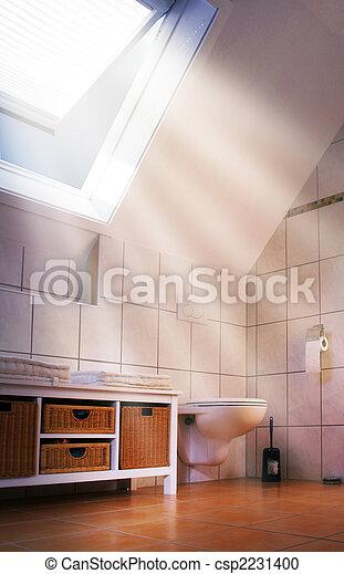 Ventana de techo - csp2231400