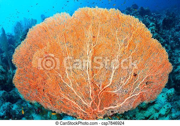 El coral de los fans de Hickson - csp7846924