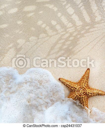 verão, abstratos, praia, fundo - csp24431037