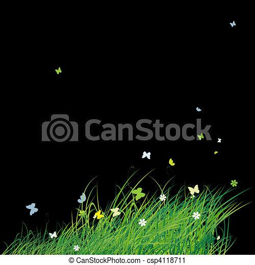 verão, borboletas, experiência verde, campo - csp4118711