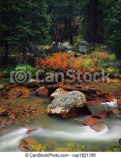 verão, colorado, clássicas, após, cena, chuva, montanha - csp1821180