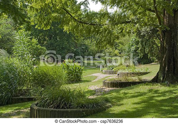 verão, ensolarado, parque, tempo - csp7636236