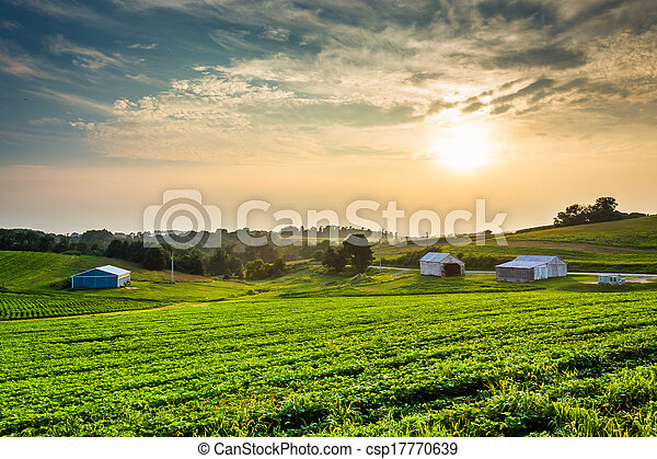 verão, fazenda, campos, sobre, nebuloso, pennsylvania., pôr do sol, york, município, rural - csp17770639