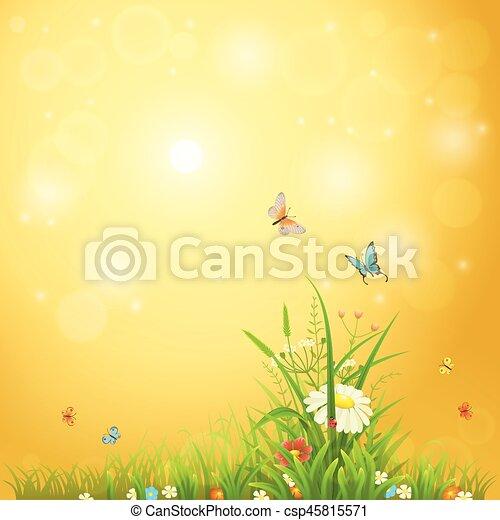 verão, luminoso, fundo - csp45815571