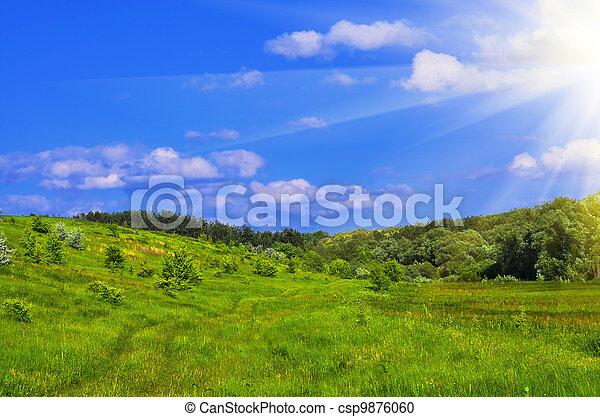 verão, paisagem - csp9876060