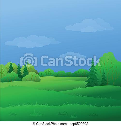 verão, paisagem, floresta - csp6529392