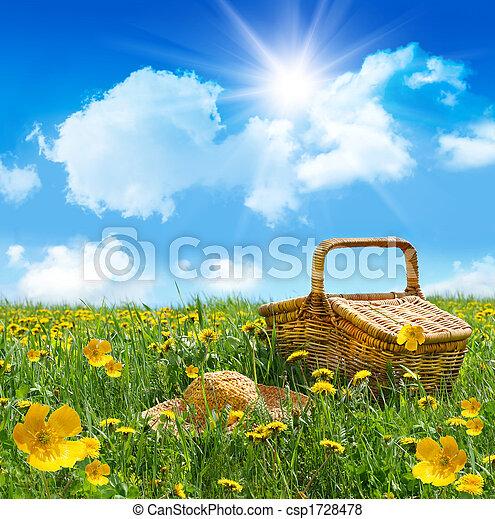 verão, piquenique, palha, campo, cesta, chapéu - csp1728478