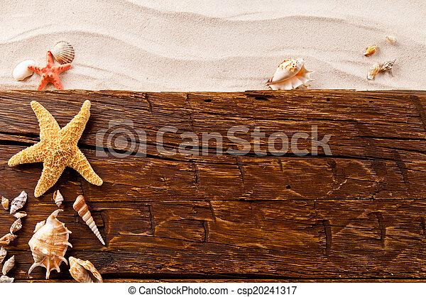 verão, praia, strafish, conchas - csp20241317