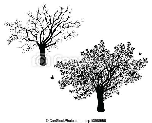 Árbol solitario - set invierno y verano - csp10898556