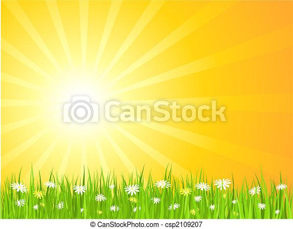 Escena de verano - csp2109207