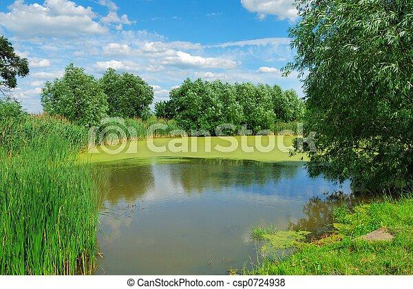 verano, paisaje - csp0724938