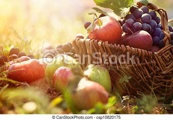 Fruta orgánica en hierba de verano - csp10820175
