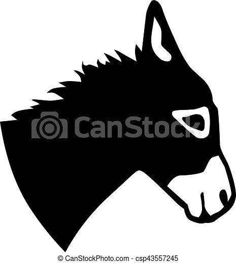 Cabeza de burro - csp43557245