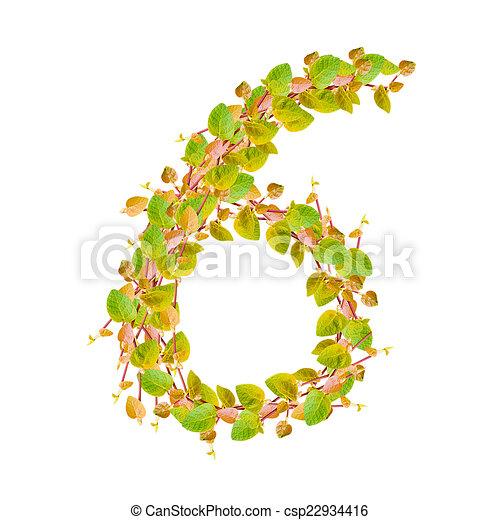 Verde, alfabeto, hojas, 6, número.
