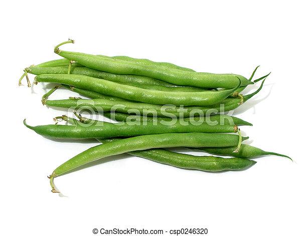 Judías verdes en blanco - csp0246320