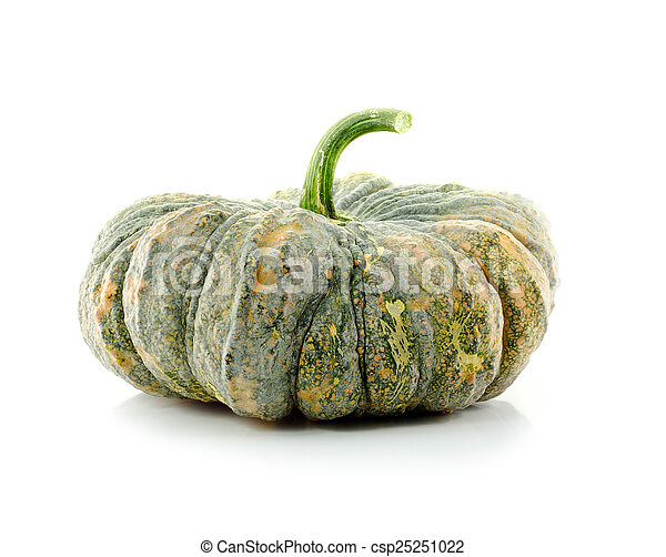 Calabaza verde - csp25251022