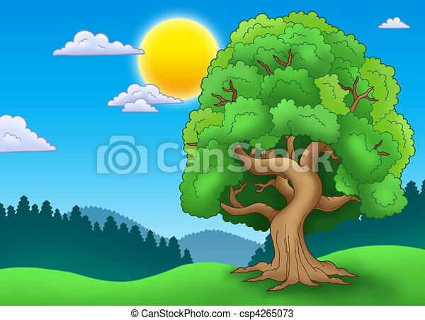 verde frondoso, paisagem árvore - csp4265073