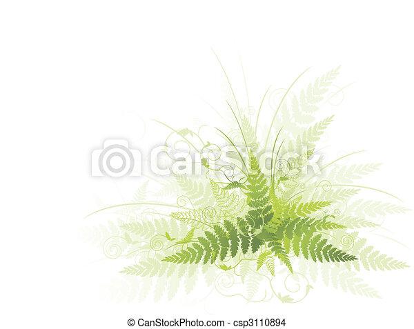 verde, helecho - csp3110894