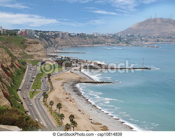 Un disparo de la playa verde de la costa - csp10814839