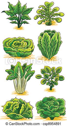 verdura, verde, collezione - csp8954891