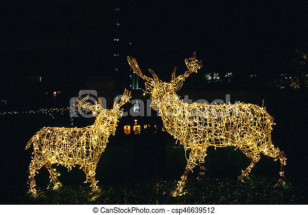 Verlicht, hertje, lichten, rendier, decoraties, kerstmis ...