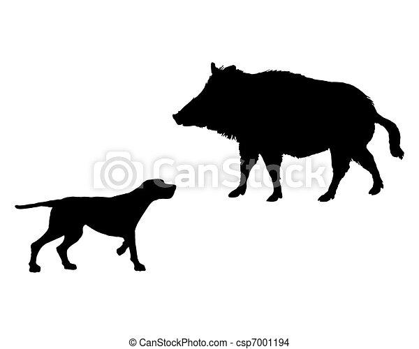verrat, deux, rencontrer, animaux, setter, figure - csp7001194