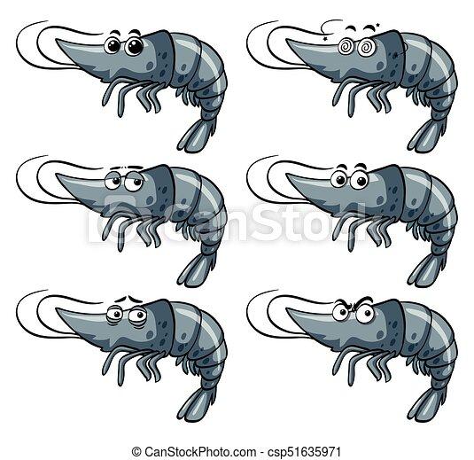 Shrimp mit verschiedenen Ausdrucksformen - csp51635971