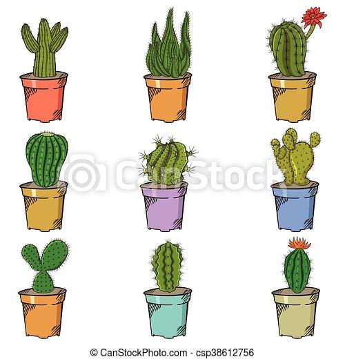 verschieden kaktus arten verschieden vektor kaktus arten abbildung. Black Bedroom Furniture Sets. Home Design Ideas