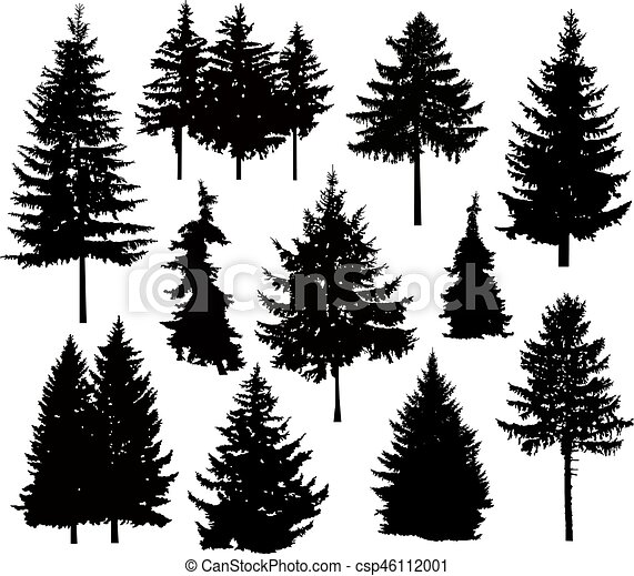 verschieden, silhouette, kiefer bäume - csp46112001