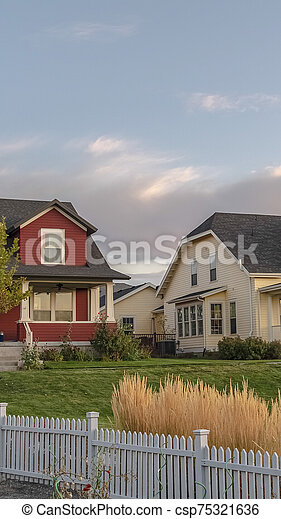 Vertical frame White picket fence with ornamental reeds near sunset - csp75321636